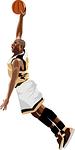 NBA ツアー 個人